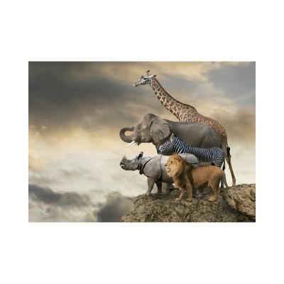 Educa Állatok a szikla szélén puzzle, 500 darabos