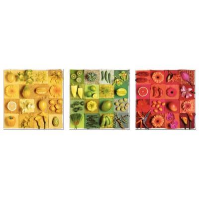 Educa Egzotikus gyümölcsök és virágok puzzle, 3x500 darabos