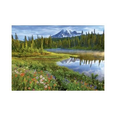 Educa Mount Rainier Nemzeti park, Egyesült Államok puzzle, 1500 darabos