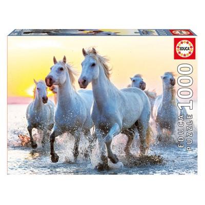 Educa Fehér lovak a naplementében puzzle, 1000 darabos