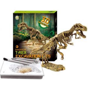 Dinoszaurusz régész készlet, T-Rex