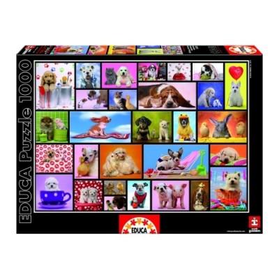Educa Közös pillanatok puzzle, 1000 darabos