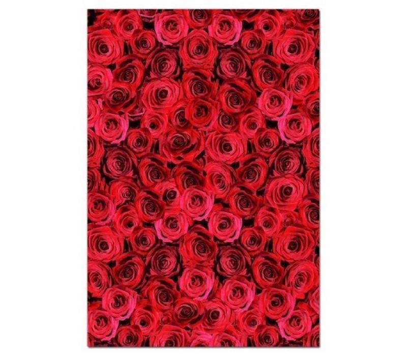 Educa Vörös rózsák puzzle, 500 darabos